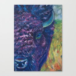 A Technicolor Bison Canvas Print