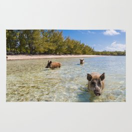 landscape with  pig in Bahamas Rug