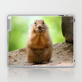 Black Tailed Prairie dog Laptop & iPad Skin