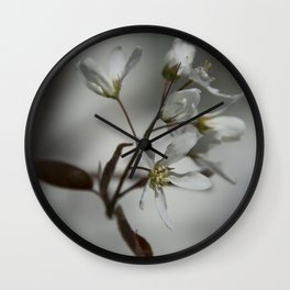 The fragile start of spring Wall Clock