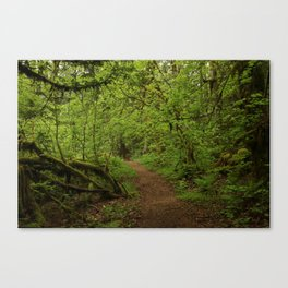 The Road to Faerie Canvas Print