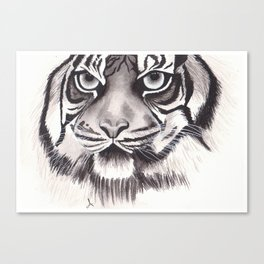 Felino Canvas Print