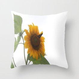 Butterflies on The Sun A Throw Pillow