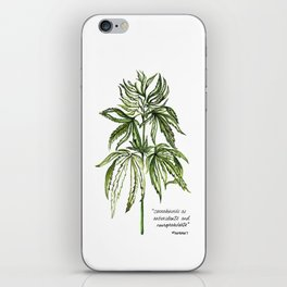 Patent #6630507 iPhone Skin