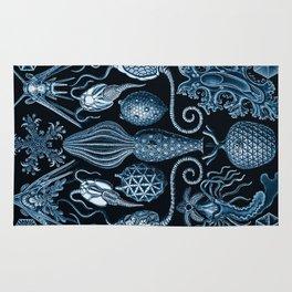 Ernst Haeckel Amphoridea Sea Life Rug