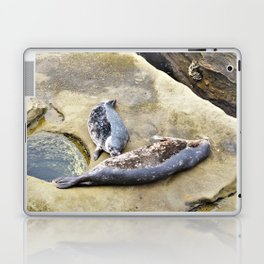 Dinner time for this seal pup. Laptop & iPad Skin