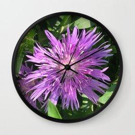 Purple Aster Wall Clock