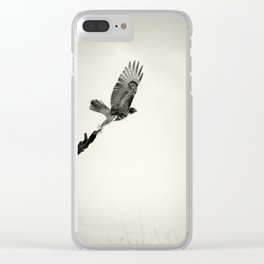 Red-Tail Hawk on Columbia River, Washington, Bird, Wildlife Clear iPhone Case