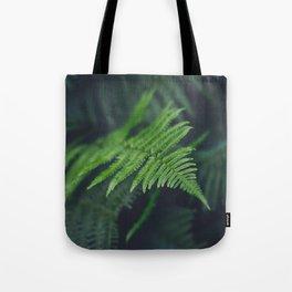 fairy fern Tote Bag