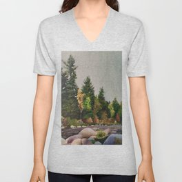 Upstate New York Gorges Unisex V-Neck