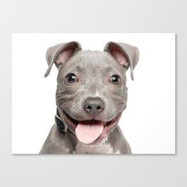 Happy stafford Canvas Print