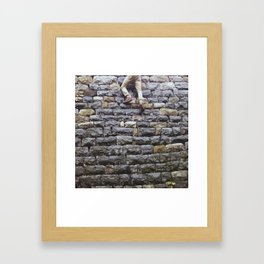 Wall Climber  Framed Art Print