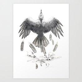 Crow Ffawkes Art Print
