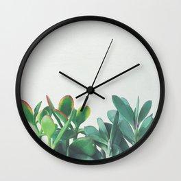 Crassula Group Wall Clock