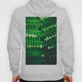 Electric Green Fern Hoody