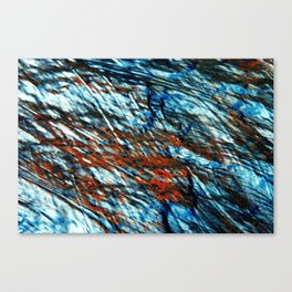 Force of nature Canvas Print
