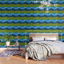 Bergwiese mit Talschluss Wallpaper