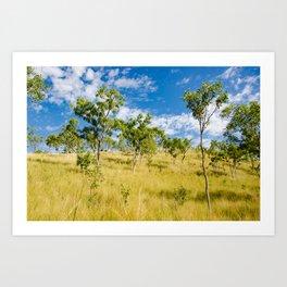 Savannah landscape Art Print