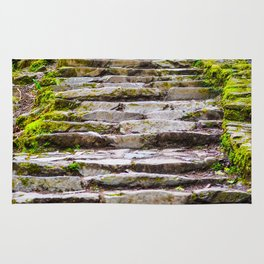 Stone Stairway in the Forest Rug