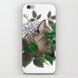 Brush Bunny iPhone Skin