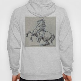 Horse, Marly court, Louvre Hoody
