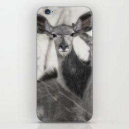 Kudu iPhone Skin