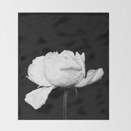 White Peony Black Background Throw Blanket