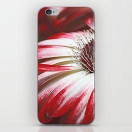 Gerbera mystery iPhone Skin