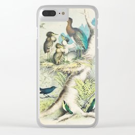 Plate VII Ornithology Birds Vintage Studies Heron, Cat Bird, Maryland Yellow Throat American Bird Clear iPhone Case