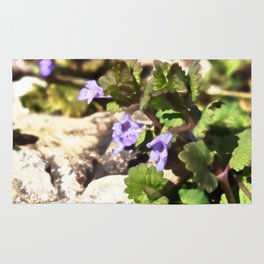 Ground Ivy 03 Rug