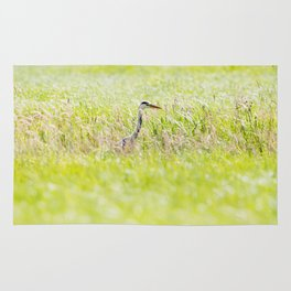 Blue heron in tall grass. Rug