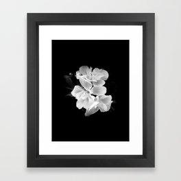 geranium in bw Framed Art Print