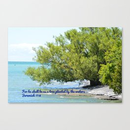 Tree By The Water With Scripture Quote Canvas Print