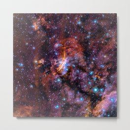 The Prawn Nebula Metal Print