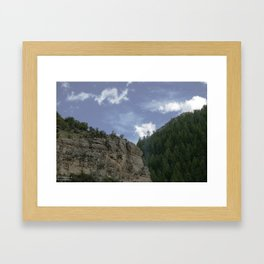 Trees and Rock Framed Art Print