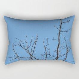 Time to grow up Rectangular Pillow
