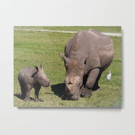 Baby Rhino & Mama Metal Print