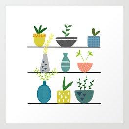 Potted Plants on a Shelf Art Print