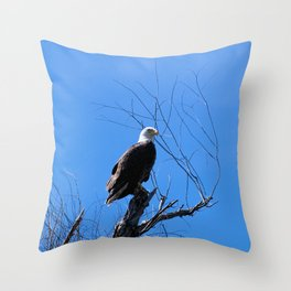 Clear Sight (Bald Eagle) Throw Pillow
