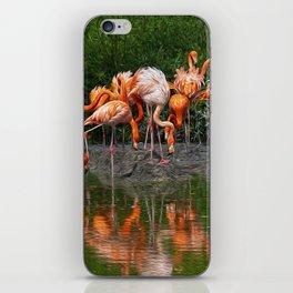 Flamingo Reflection iPhone Skin