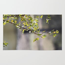 Sunny green African tree Rug
