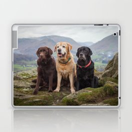 Labradors Laptop & iPad Skin