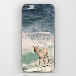 NEVER STOP EXPLORING - SURFING HAWAII iPhone Skin