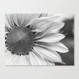 The Flower (Black and White) Canvas Print