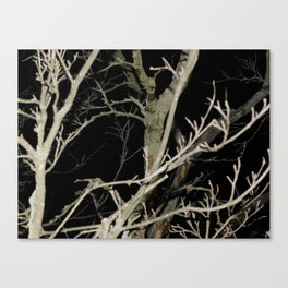 Dreary Darkness Canvas Print