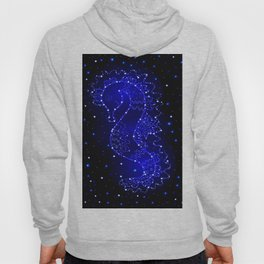 sea horse swims in lights Hoody