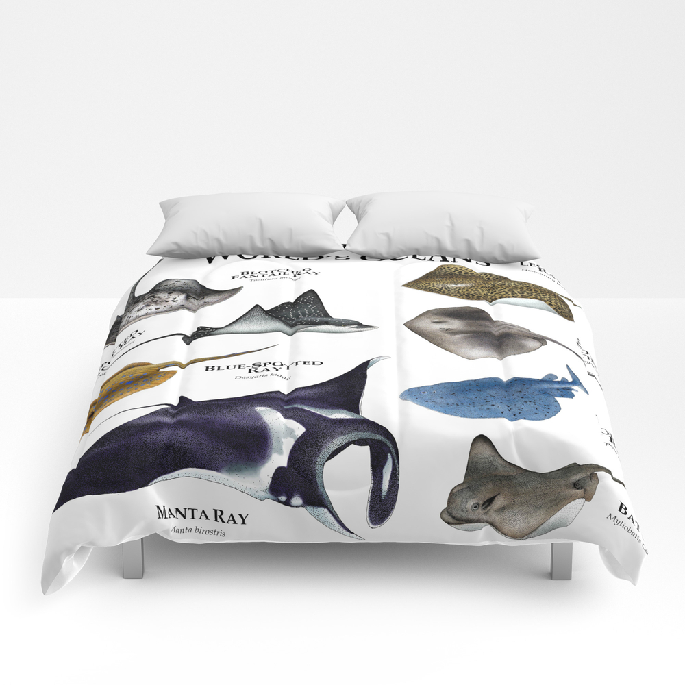 Rays Of The World's Oceans Comforter by Wildlife-art CMF8510331