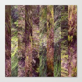 Super Natural No.5 Canvas Print