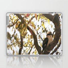 Kookaburra  Laptop & iPad Skin
