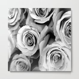 Black and White Roses Metal Print